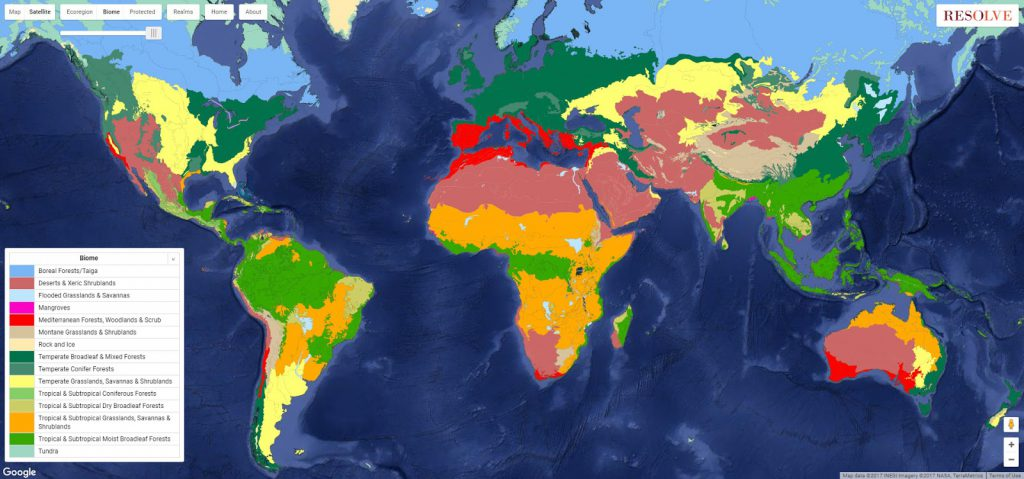 Ecoregions and biomes of the world vivid maps a biome is a community of plants and animals living together in a certain kind of gumiabroncs Image collections