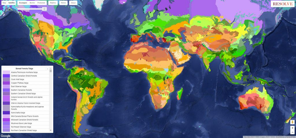 Ecoregions and biomes of the world vivid maps have you ever imagined what a map of the earth would look like using natural rather sciox Image collections