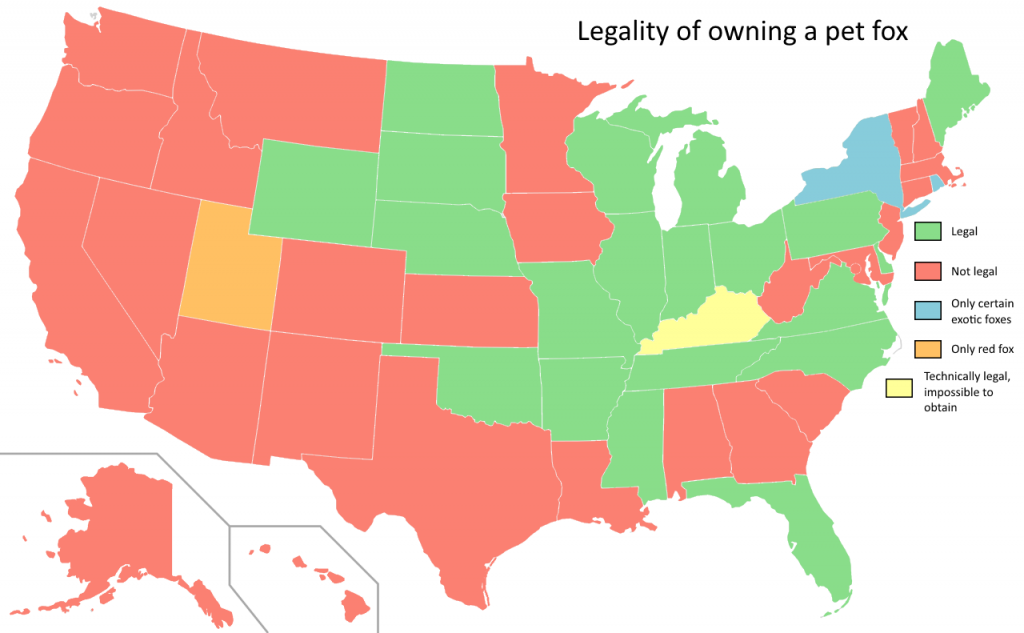 Legality of owning a pet fox by US state