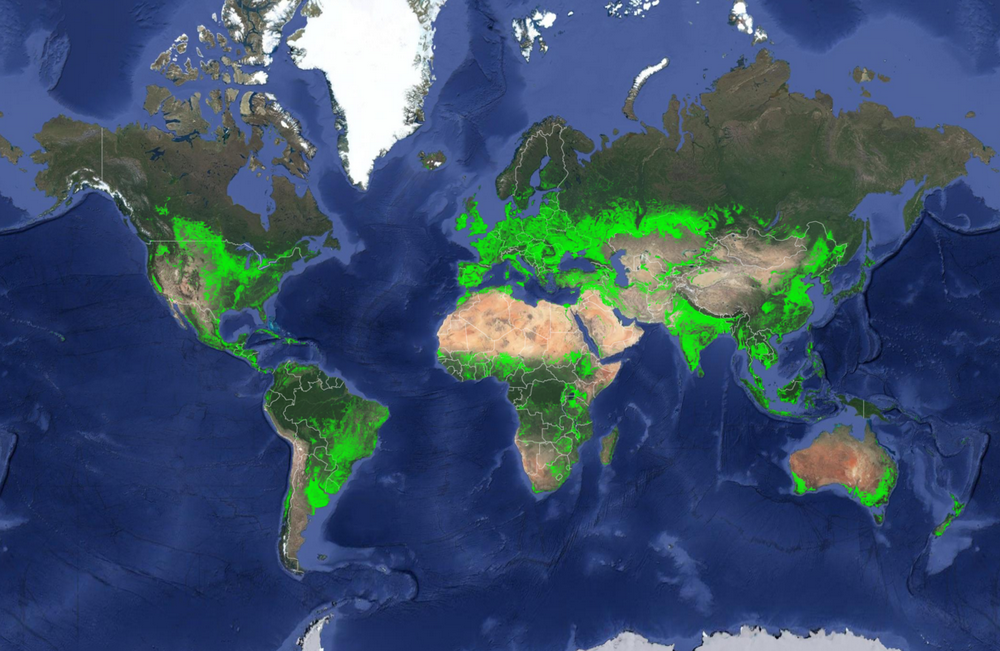 Croplands in the World