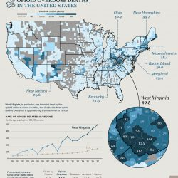 Opioid overdose deaths in the United States