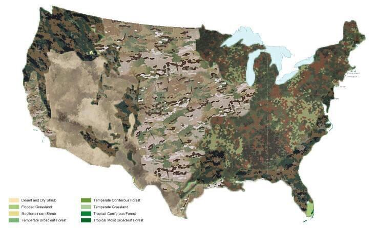 What type of camouflage to wear around the United States