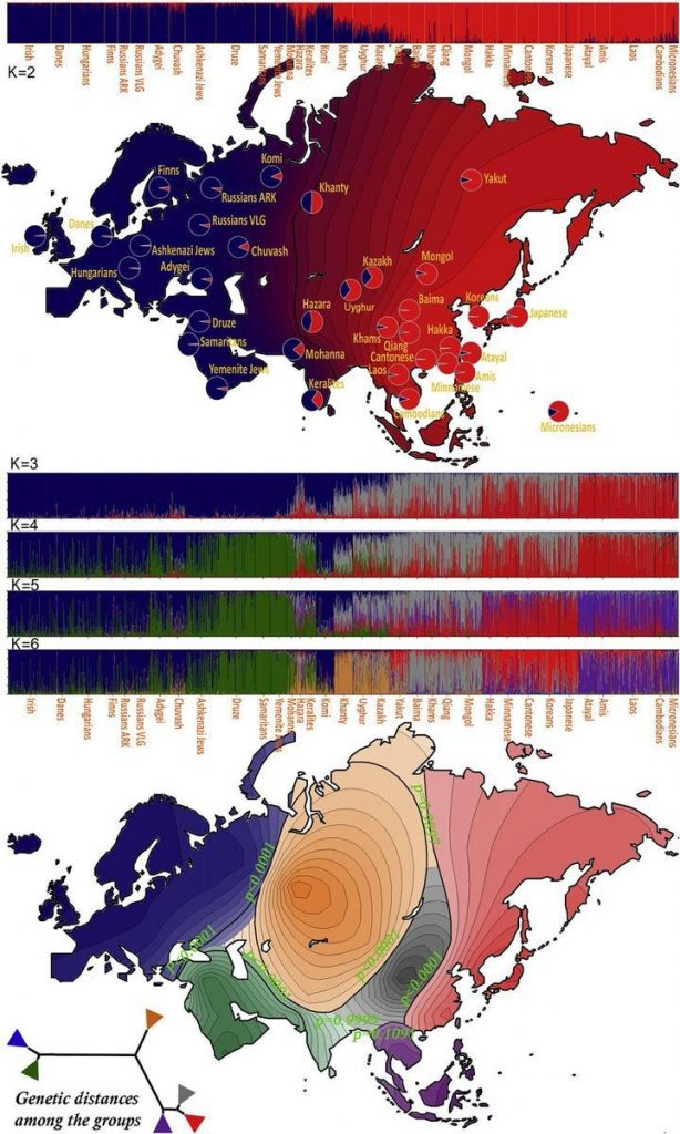 Genetic distances of the Eurasia continent's populations