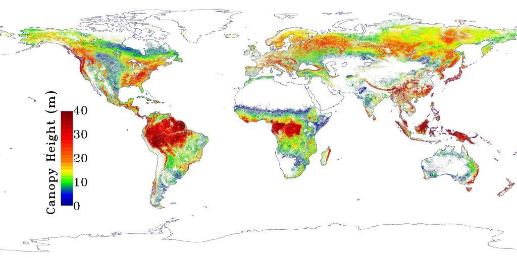 NASA Tree Height Map